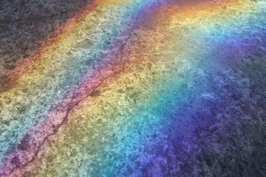 虹になって。.jpg